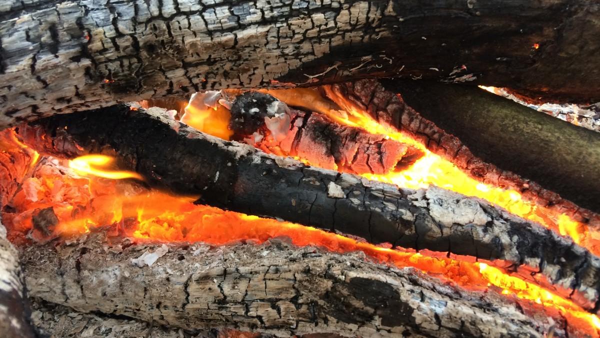 My Stories: DriftwoodToast