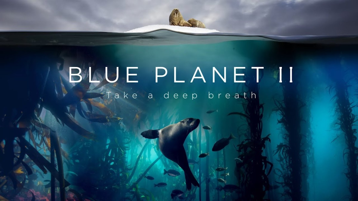 Because it's Friday: Blue Planet II: The Prequel